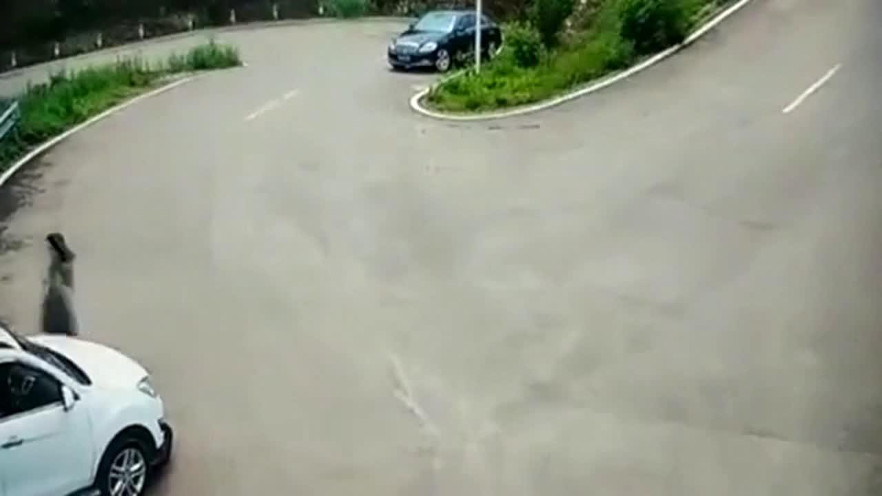 一个视频告诉你,老司机和女司机之间的差距究竟有多大
