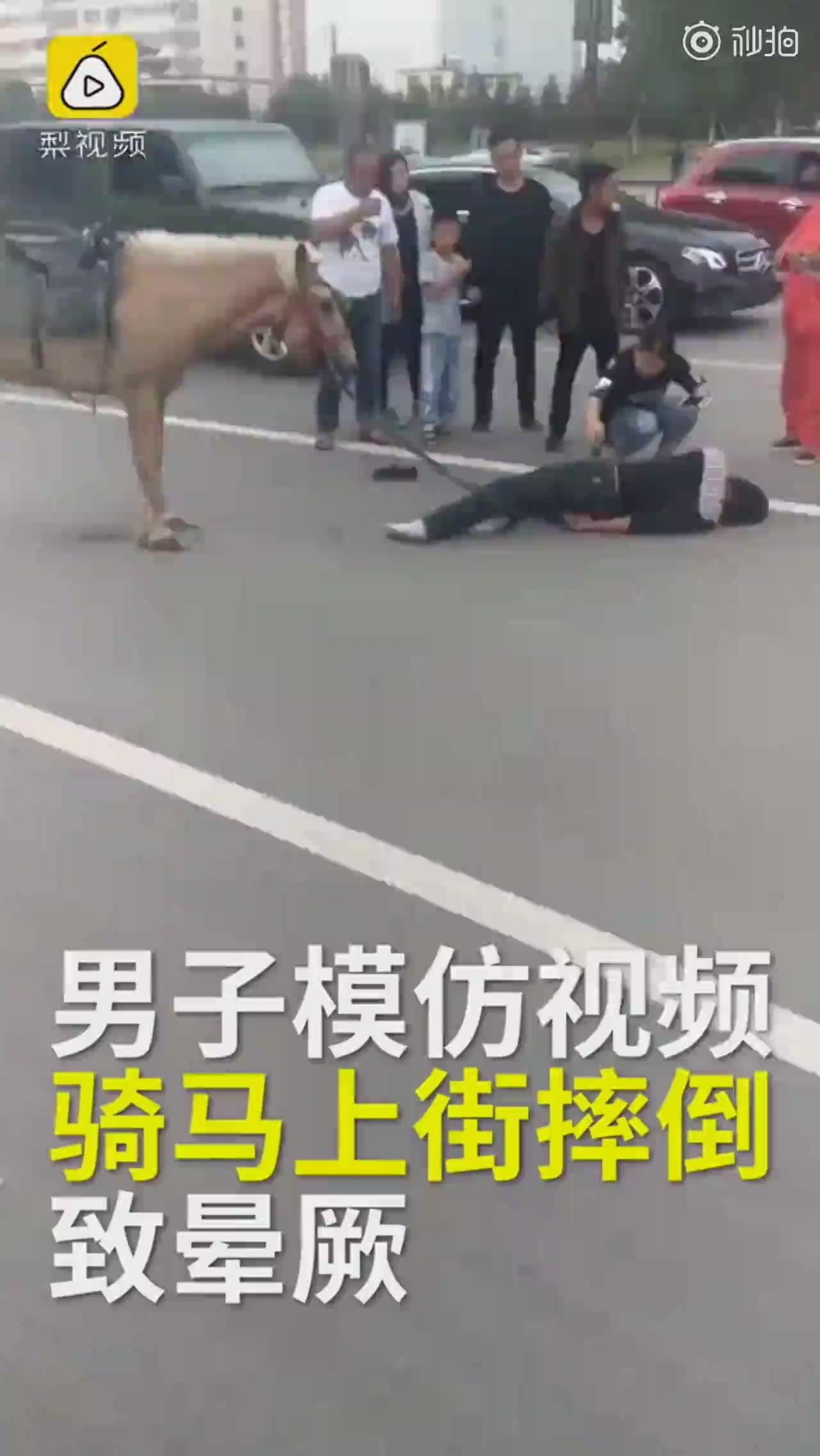 男子模仿网红视频,骑马飞奔摔惨了