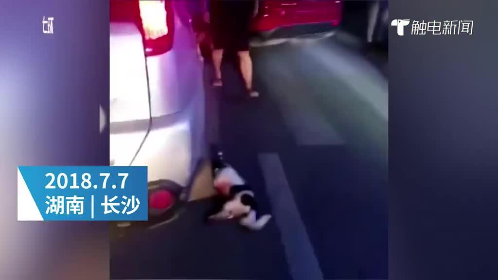 小狗被绑轿车遭拖行