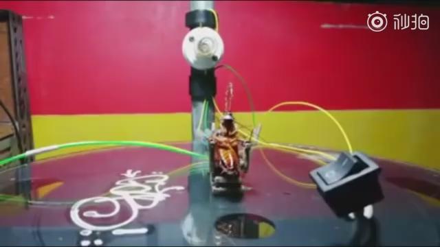 菲律宾一男子自制电椅处死蟑螂