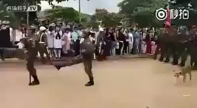 非洲某国阅兵